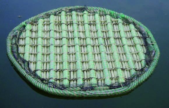 Schwimmende Pflanzinseln / Schwimmende Phytofilter