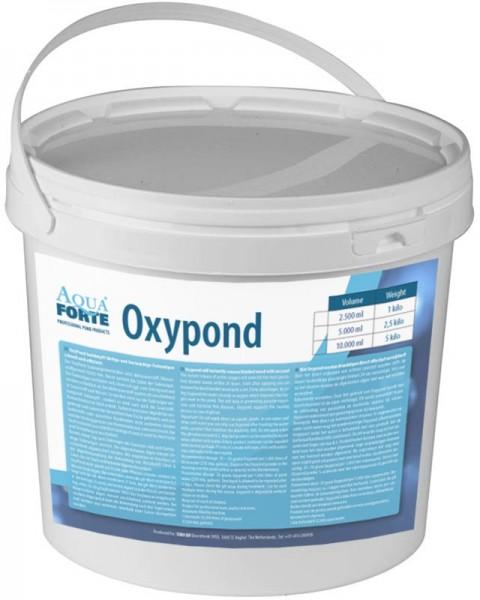 AquaForte Oxypond Fadenalgenvernichter